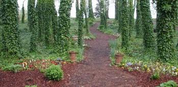 Path to Prayer Garden1