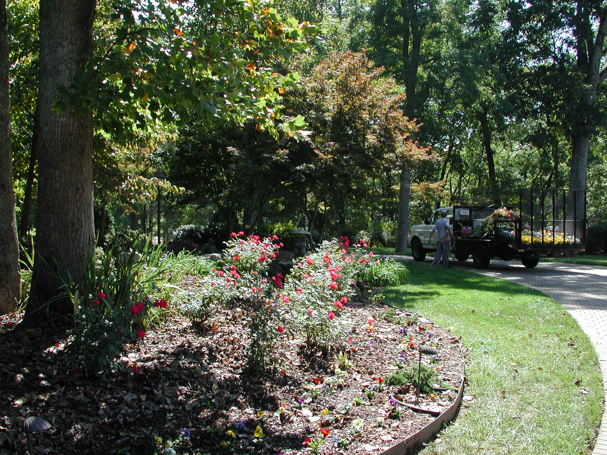 Lawn maintenance mckamey landscapes llcmckamey for Landscape garden maintenance