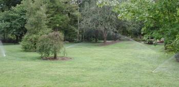 McKee irrigation Fall 2009 016